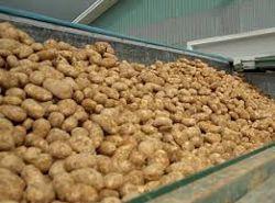 patates 25-6-2014